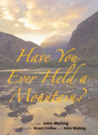 Have You Ever Held a Mountain by John Maling
